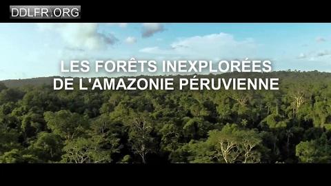 Les forêts inexplorées de l'Amazonie péruvienne