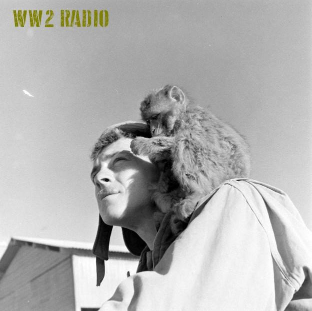 Poste de commandement avancé - Tunisie - 1943 160919071200160727