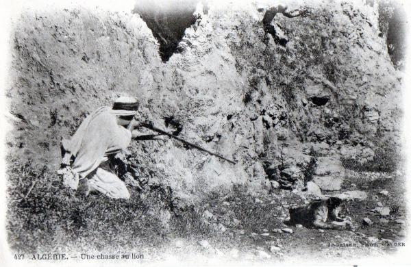 Croyances autour de la chasse au lion  dans Attributs d'Algérienneté 160921022628132473