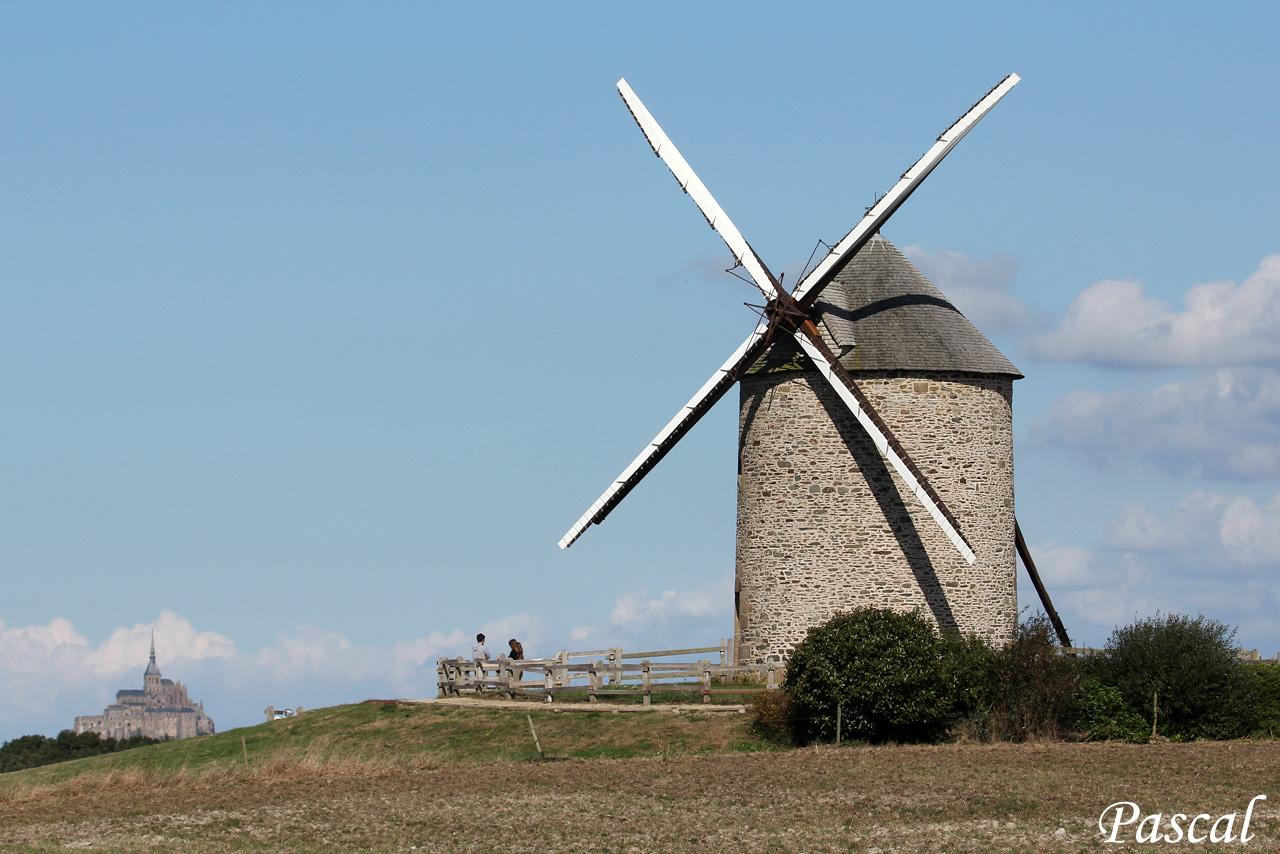 Les herbus de la baie du Mont Saint Michel 161004114445191821