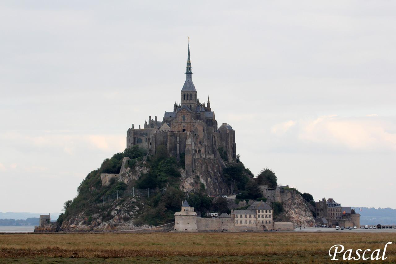 Les herbus de la baie du Mont Saint Michel 161009023841249075