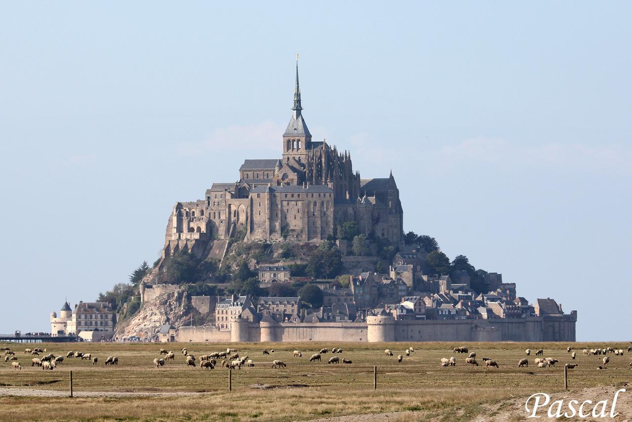 Les herbus de la baie du Mont Saint Michel 161009024347557831