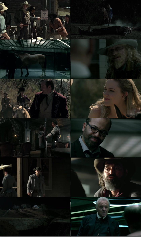 Westworld.S01E01.1080p.HDTV.x264-BATV
