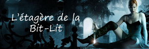 Le-week-end-de-la-bit-lit