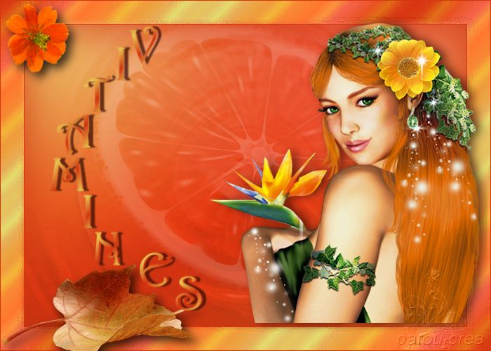 Vitamines - Page 2 161101044420796882