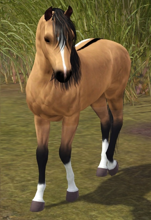 """[Challenge] Teens and Horses """"Sims 3"""" - Page 2 16110204373616586"""