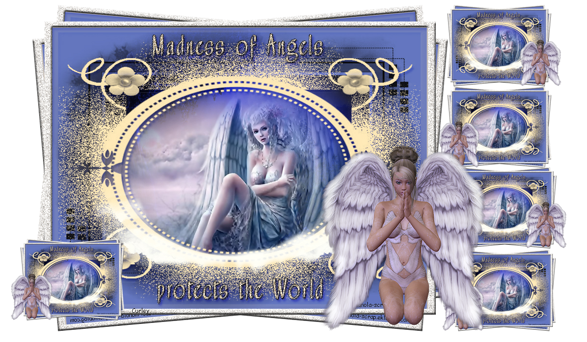 madness of angels  2015