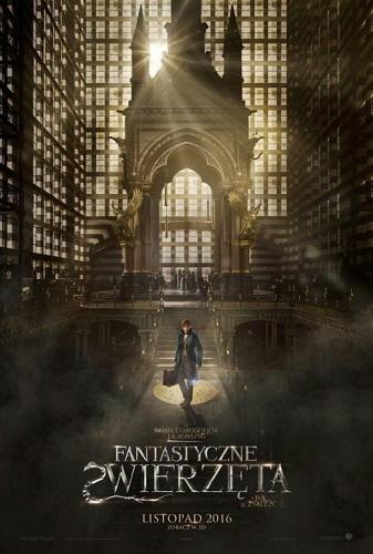 Fantastyczne zwierzęta i jak je znaleźć / Fantastic Beasts and Where to Find.. (2016)