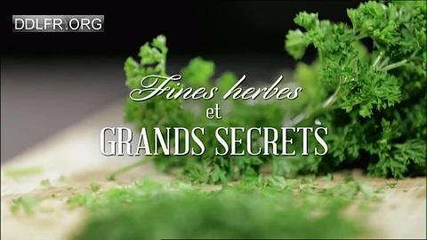 Fines herbes et grands secrets