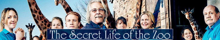 HDTV-X264 Download Links for The Secret Life Of The Zoo S02E02 AAC MP4-Mobile