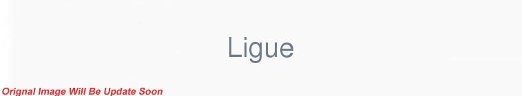 HDTV-X264 Download Links for Ligue 1 2016 11 25 Rennes vs Toulouse XviD-AFG