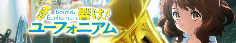 X264LoL Download Links for Sound Euphonium S02E08 XviD-AFG