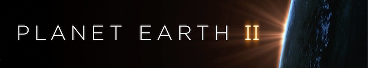 HDTV-X264 Download Links for Planet Earth II S01E01 BDRip x264-ROVERS