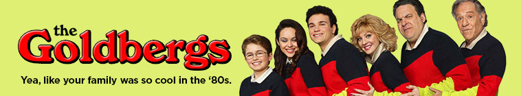 HDTV-X264 Download Links for The Goldbergs 2013 S04E08 480p x264-mSD