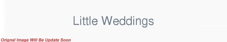HDTV-X264 Download Links for Little Weddings S01E02 XviD-AFG