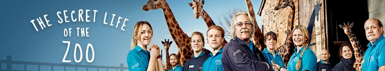 HDTV-X264 Download Links for The Secret Life Of The Zoo S02E03 AAC MP4-Mobile