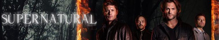 HDTV-X264 Download Links for Supernatural S12E07 XviD-AFG