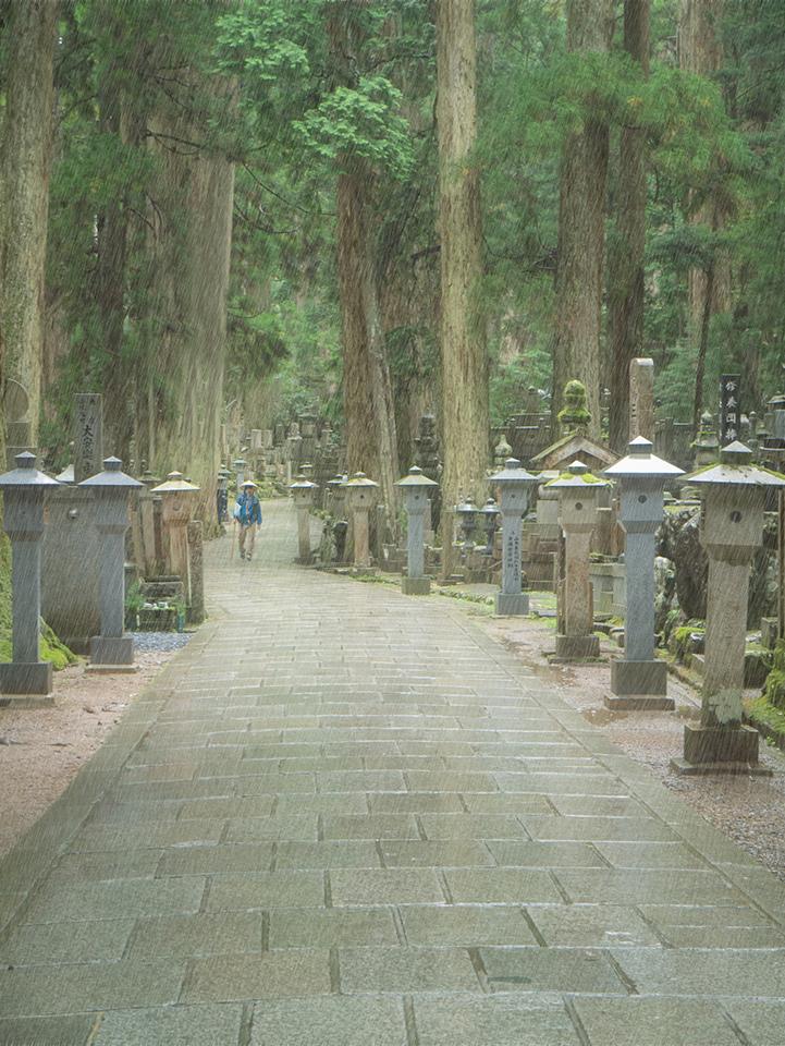 Le cimetière 161209060651435528