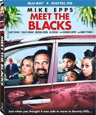 Meet The Blacks french bluray 1080p
