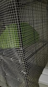Cage, grillage, accessoires, désespoir et autres mots clés  Mini_17010402034416077