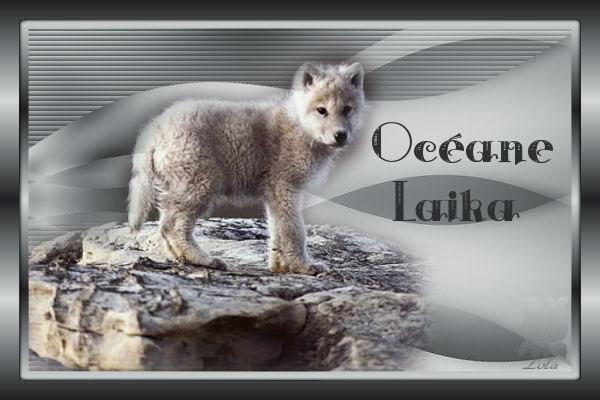 1Océane Laika