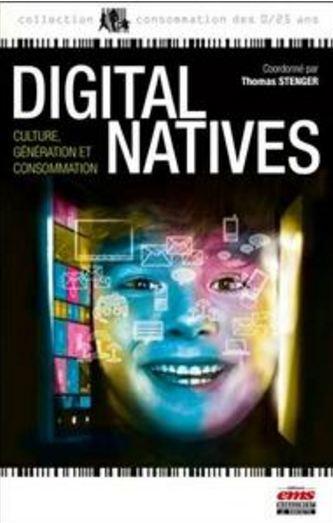 télécharger Digital natives : Culture, génération et consommation