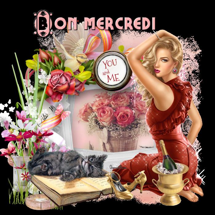 les bonjour et bonsoirs du mercredi 170208034915779573