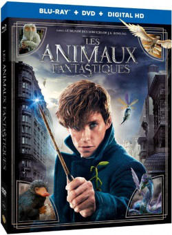 Les Animaux fantastiques BLURAY 1080p TRUEFRENCH