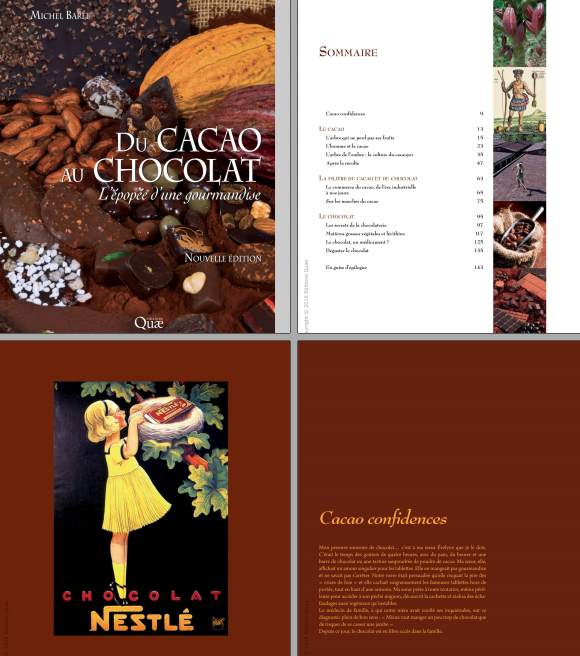 télécharger Du cacao au chocolat : L'épopée d'une gourmandise Nouvelle édition