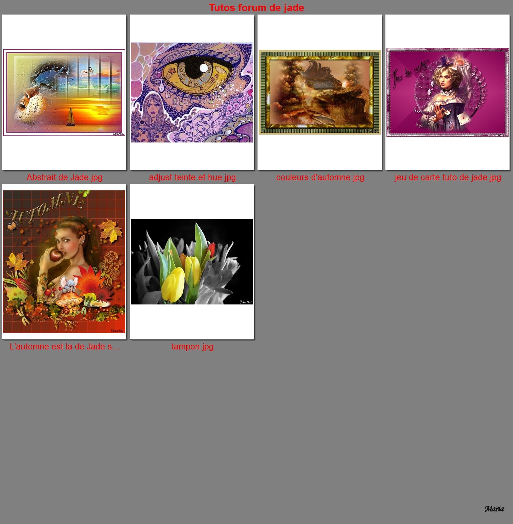 """N°78 PFS """"  planche contact d'une série de photos """" 170308102631495979"""