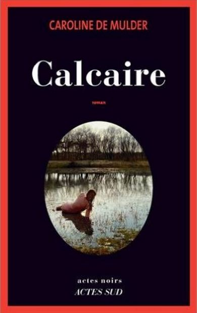 télécharger Calcaire (2017) - Caroline de Mulder