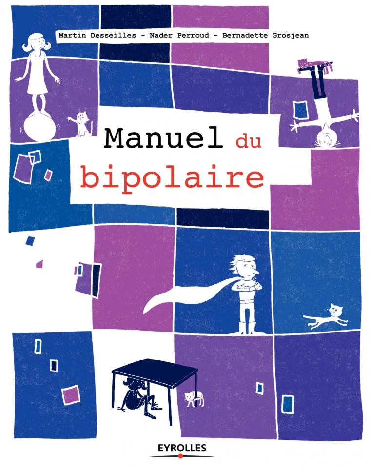 Manuel du bipolaire (2017) - Martin Desseilles