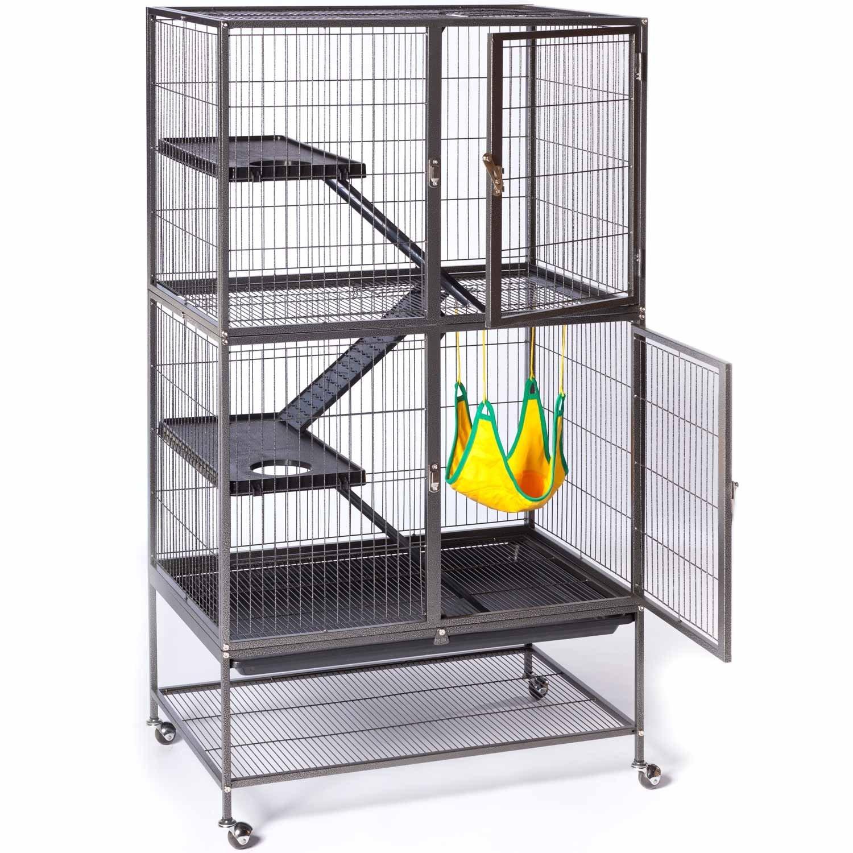 """Commentaires sur """"les photos de vos cages"""" - Page 4 170325011742120135"""