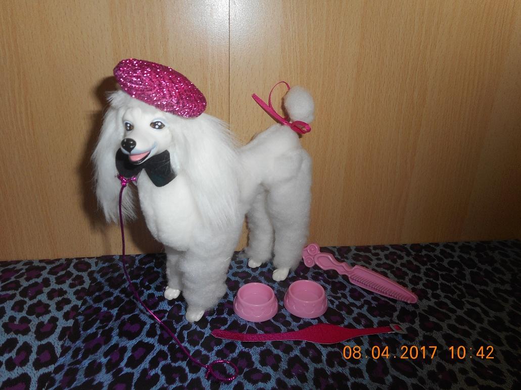 Les Barbies de Nico  - Page 11 170408064841978590