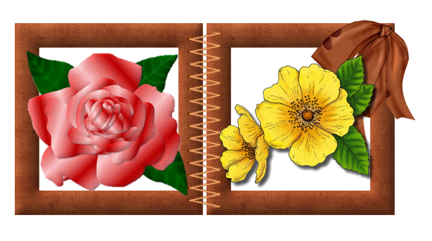 rose rouge jaune