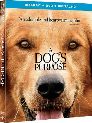 Mes vies de chien BLURAY 1080p FRENCH