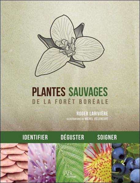 Plantes sauvages de la forêt boréale