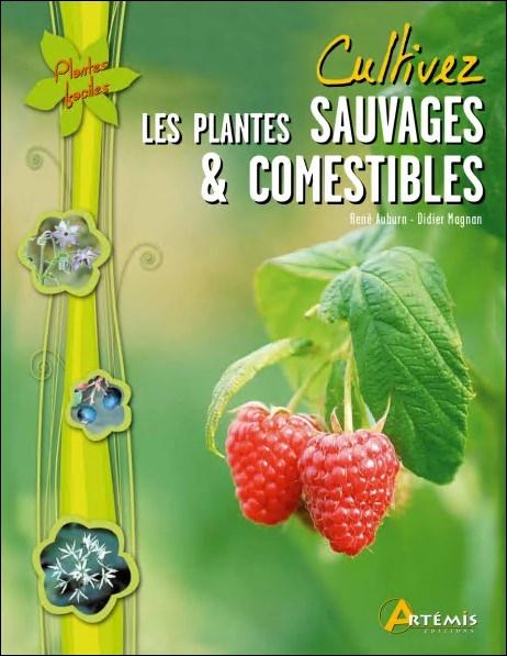 télécharger Cultivez les plantes sauvages & comestibles