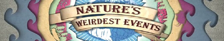 SceneHdtv Download Links for Natures Weirdest Events S05E08 720p HDTV x264-QPEL
