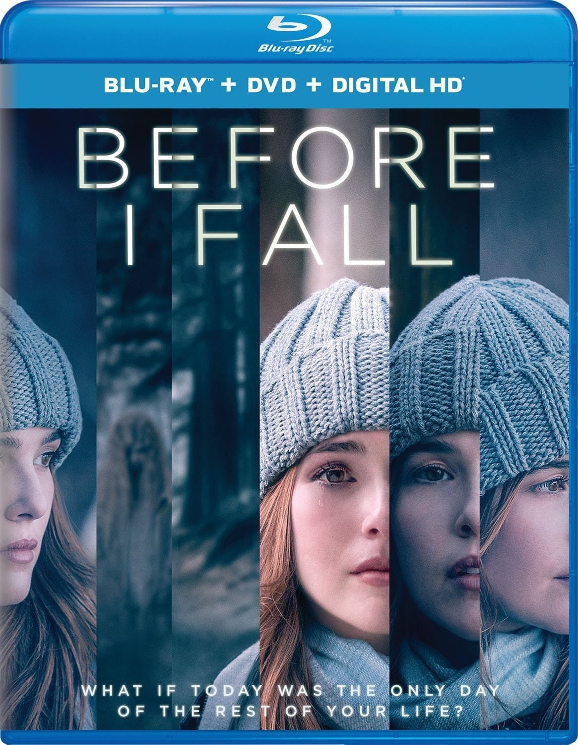 Before I Fall (2017) poster image