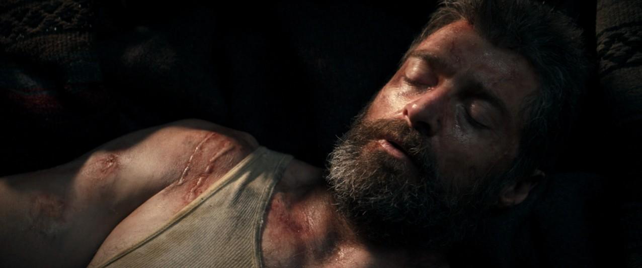 Logan(2017) image