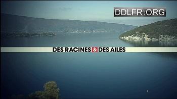 Des racines et des ailes En Provence, du pays d'Aix aux Alpilles HDTV