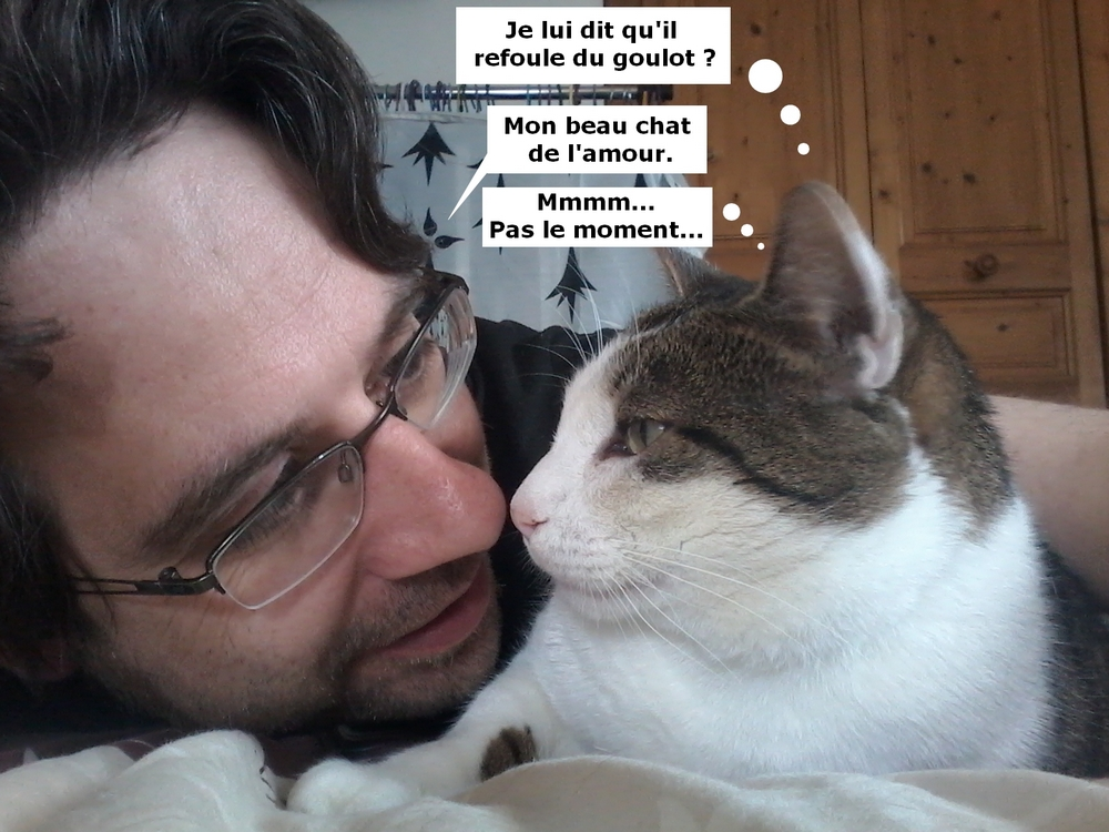 Topic Animaux de compagnie - Page 36 170531092651213391