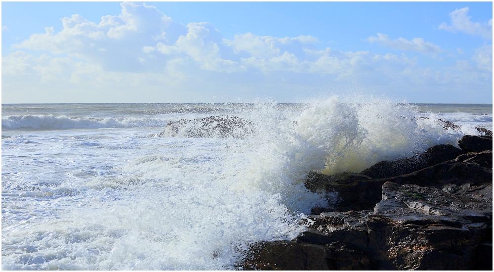 Deux belles vagues  17060104024221177