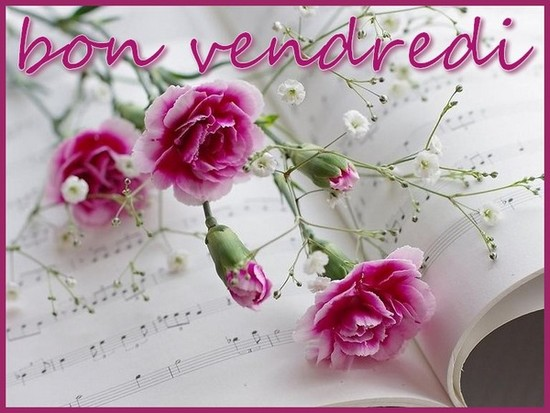 VENDREDI 09 JUIN 2017 Sainte DIANE 170608113211842403