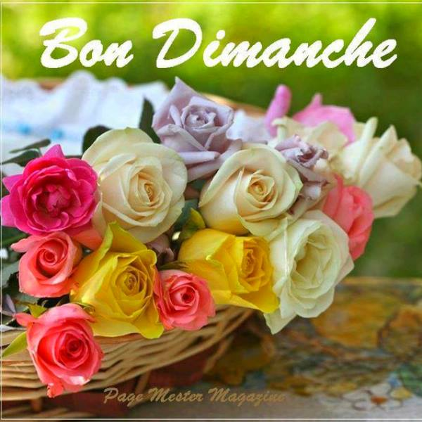 DIMANCHE 11 JUIN 2017 Saints BARNABE et YOLANDE 170610113802263585