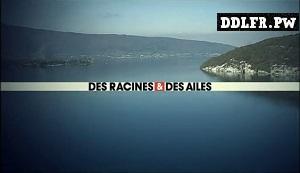 Des racines et des ailes Passion patrimoine : Un balcon sur les Pyrénées HDTV