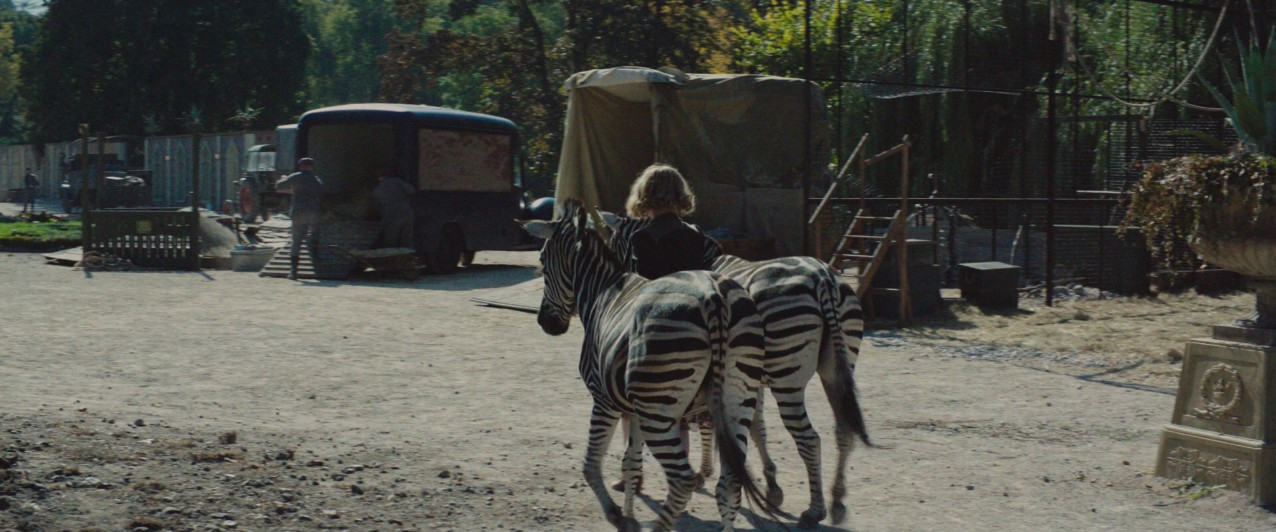 The Zookeeper image