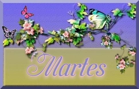 Guia de Hojas  170721071450212744