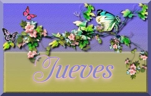Guia de Hojas  1707210714516590